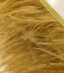 Mustard green ostrich feathers