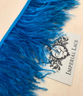 Vibrant blue ostrich feathers