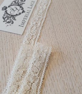 Ecru chantilly elastic lace trimming