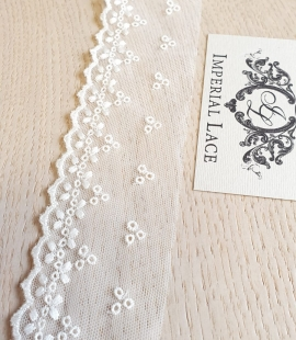 Ivory embroidery tulle lace trimming