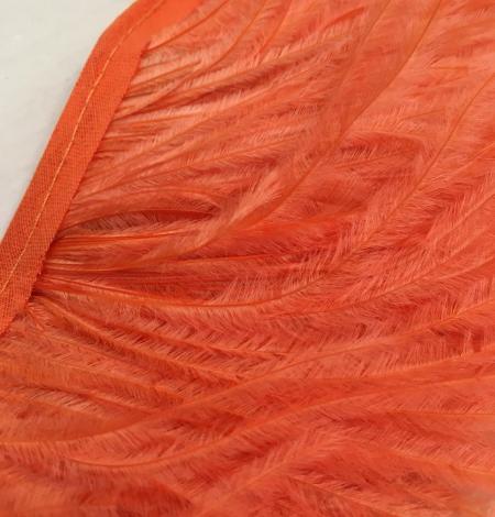 Orange ostrich feathers. Photo 2