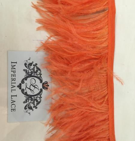 Orange ostrich feathers. Photo 7
