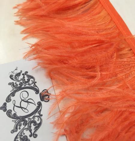 Orange ostrich feathers. Photo 10