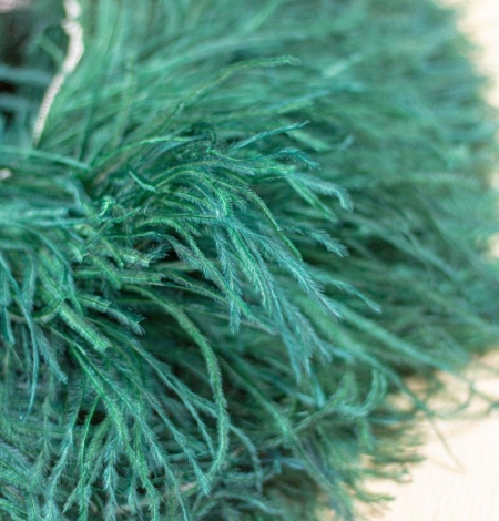 Dark green ostrich feather. Photo 3