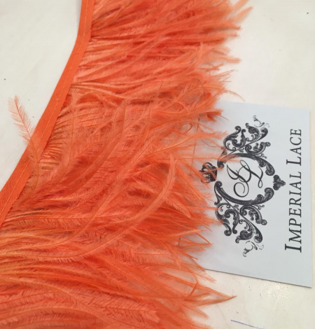 Orange ostrich feathers. Photo 1