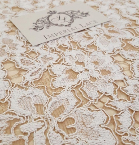 Ivory with Brown Lace Fabric. Photo 1