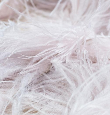 Light pink with grey shade soft natural ostrich feather. Photo 4
