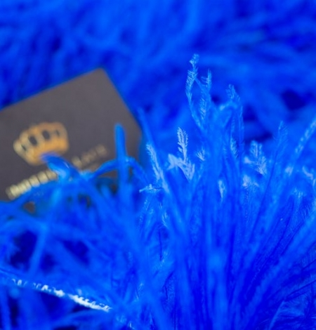 Royal blue natural ostrich feather. Photo 5