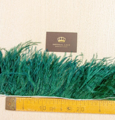 Dark green ostrich feather. Photo 8